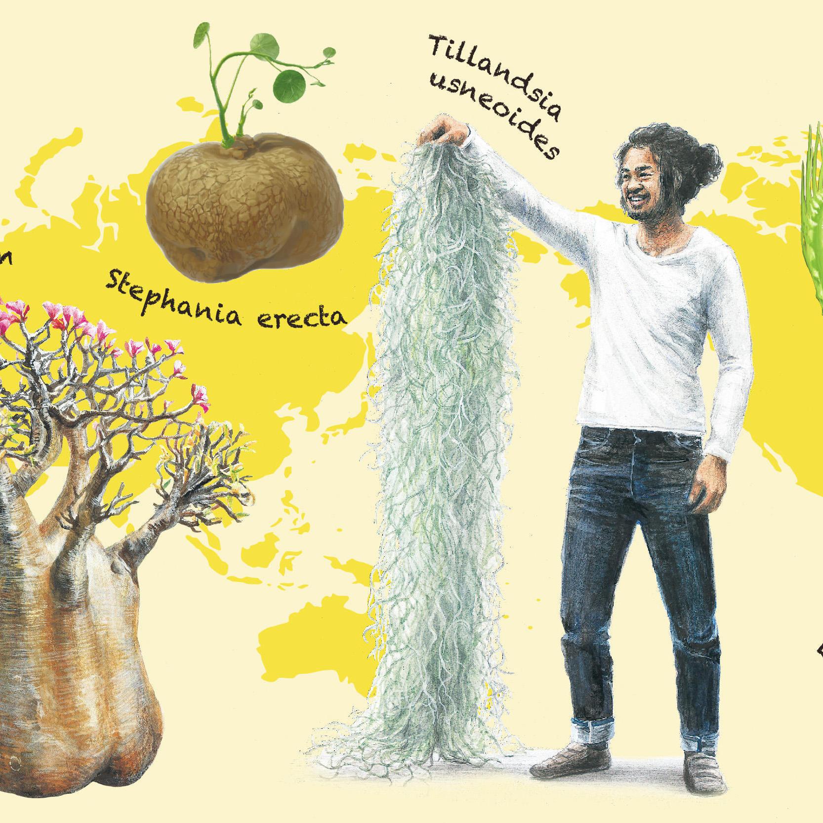 西畠清順 そらみみの旅 世界をめぐる植物の展覧会