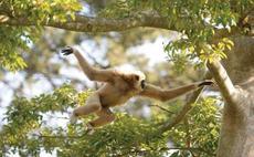 動物写真講座「親子で挑戦!一眼レフカメラで動物写真を撮ろう!」