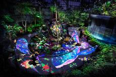 チームラボ 宇部市ときわ公園2017 世界を旅する植物に住まう生き物たち