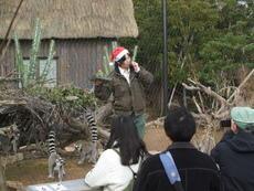 ときわ動物園のクリスマス!
