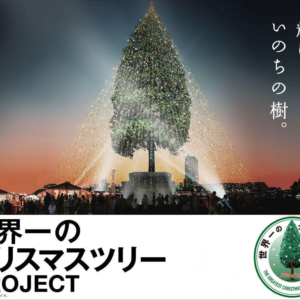 ときわミュージアムのクリスマス!