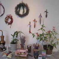 植物文化作品展