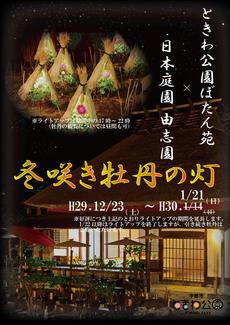 ときわ公園「ぼたん苑」×日本庭園「由志園」・「冬咲き牡丹の灯」