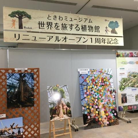ときわミュージアム 世界を旅する植物館1周年記念企画展