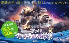 第2回カワウソゥ選挙 ときわ動物園からエントリーしています!