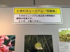 ときわミュージアム「写真展」