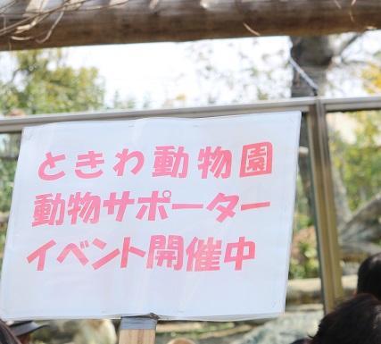 第8回ときわ動物園動物サポーターイベント
