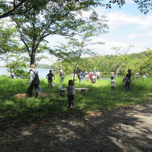 昆虫観察会~見つけようときわ公園の昆虫~