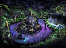 チームラボ 宇部市ときわ公園 2019 世界を旅する植物館 水の道 光の道