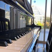 ストリートピアノinときわミュージアム