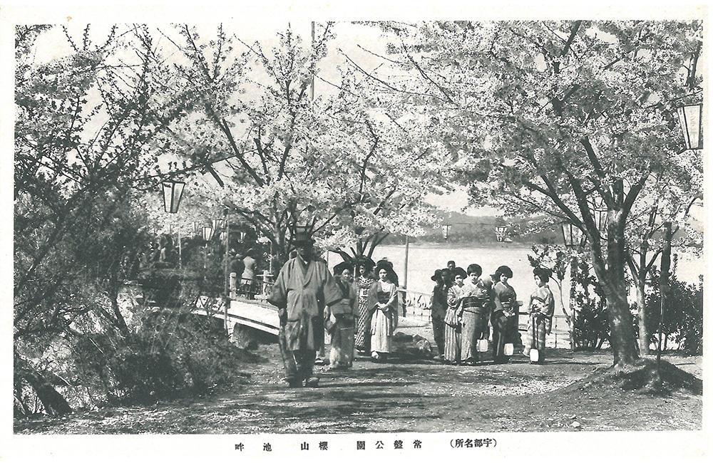 常盤公園 桜山 池畔