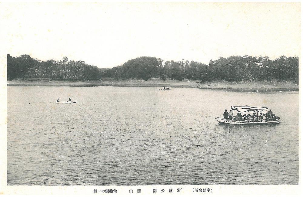 常盤公園 桜山 常盤湖の一部