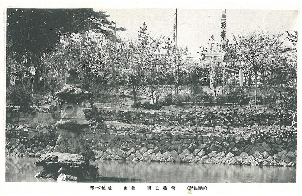 常盤公園 桜山 池の一部
