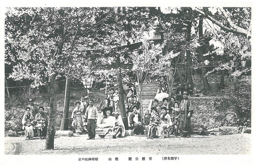 常盤公園 桜山 稲荷神社の前