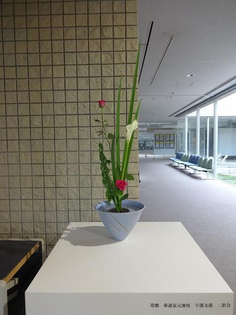 s-DSC05993.jpg