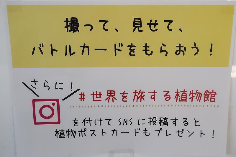 s_IMG_5992.jpg
