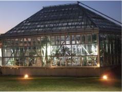 夜の熱帯植物室(中庭より)