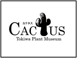 ミュージアムショップCactus(カクタス)