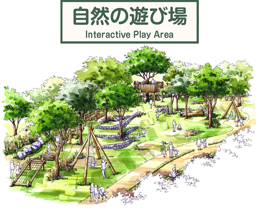 自然の遊び場