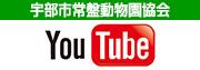 宇部市常盤動物園協会Youtube