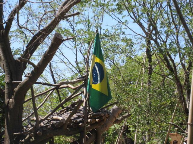 8月27日 この夏はブラジル!