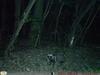 5月15日 常盤公園に生息するアナグマ