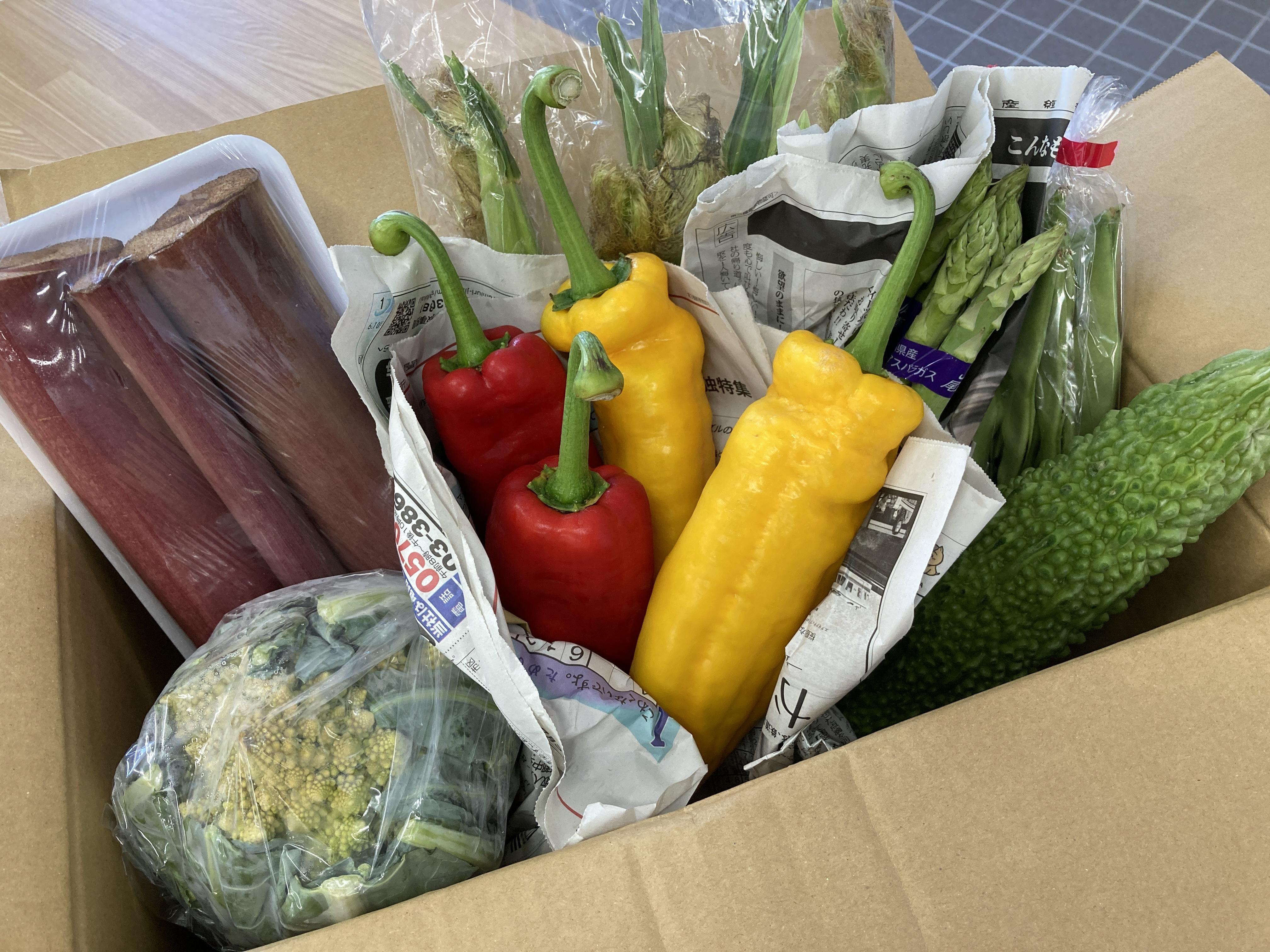 8月14日 野菜のご寄付をいただきました!