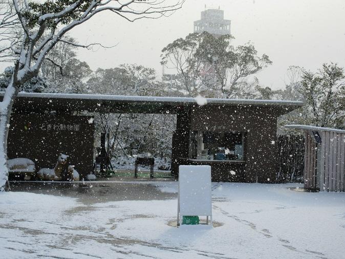 ときわ動物園雪.JPG