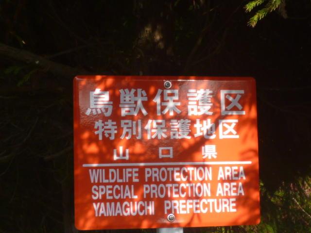 鳥獣保護区サイン