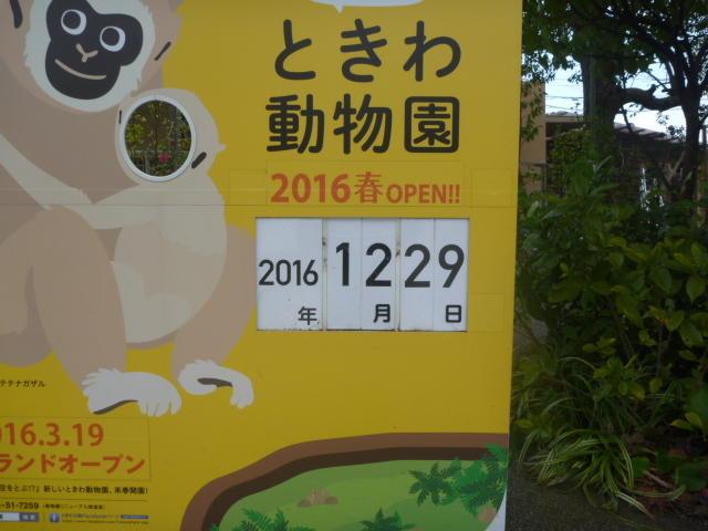 入口カレンダー